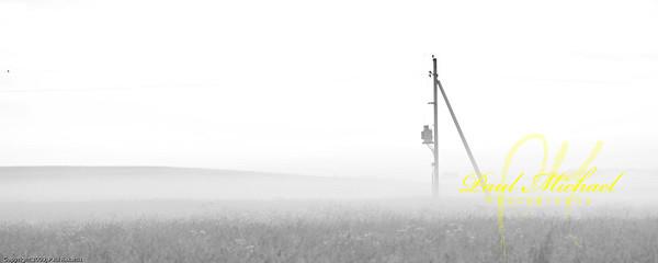 Fog in Rye Fields with Power pole.