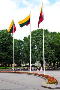 Whitehouse flags - Baltarumai presidento namai. Lithuanian Flag.  Lietuviu Veleva