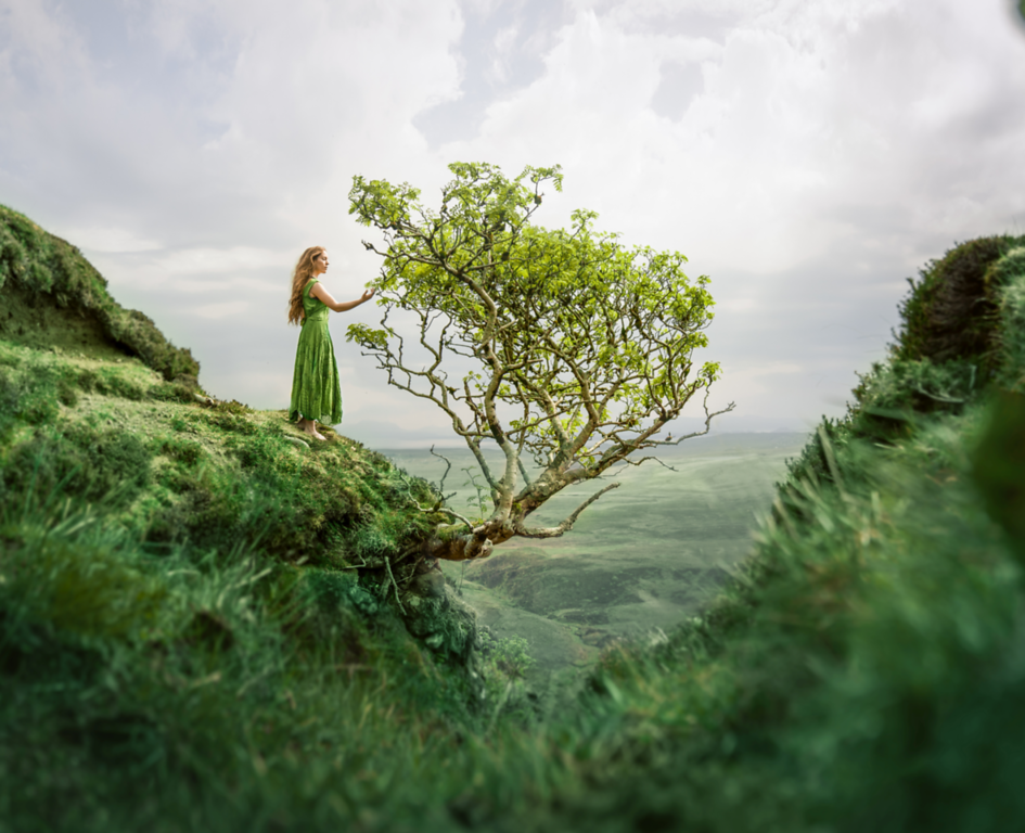 Getting lost in the wilds with Lizzy Gadd.