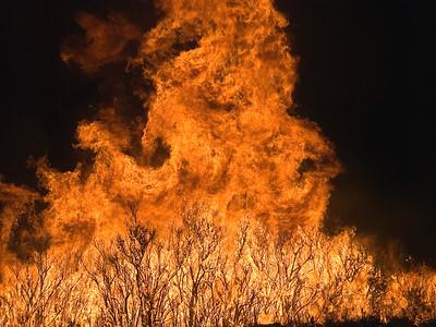 Little Bear Fire (NM, 2012)