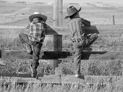 Little Cowboys Photos and Cards