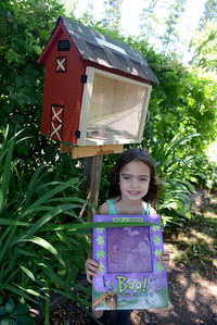 "Tania Barricklo-Daily Freeman                      This Little Free Library is part of a local Girl Scout Gold Award project and was installed on Dec. 30, 2015. ""The Friends of Forsyth Nature Center oversee this Little Free Library and coordinate the book donations for it,"" according to Phoebe McDonough."