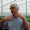 NASHOBA VALLEY VOICE/ANNE O'CONNOR<br /> Thousands of boxes of crunchy lettuce leave Little Leaf Farms in Devens every day. The company will add another 2.5 acres greenhouse within a year and double their growing space. Executive Vice President Tim Cunniff explained the processes in the high-tech greenhouse.