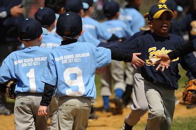 Little League Baseball 29