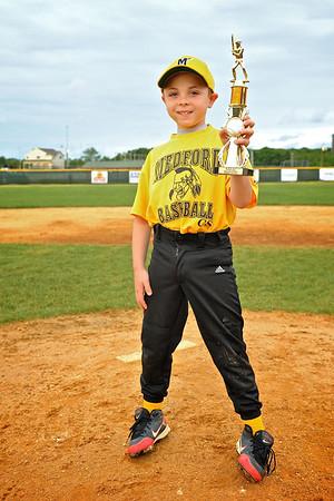 Little League Baseball 64