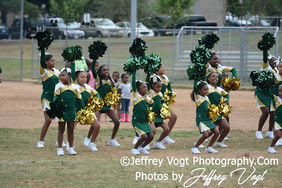 2015 Little League Cheerleading