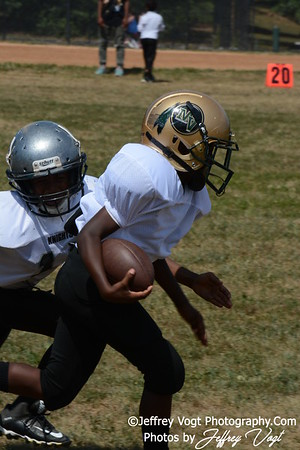 2015 Little League Football