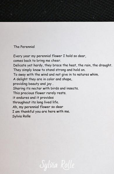 The Perennial