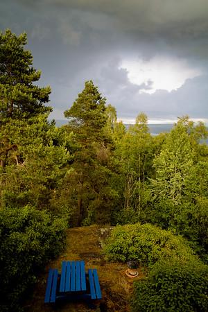 """My """"garden"""" (© Ragnar Våga Pedersen)"""