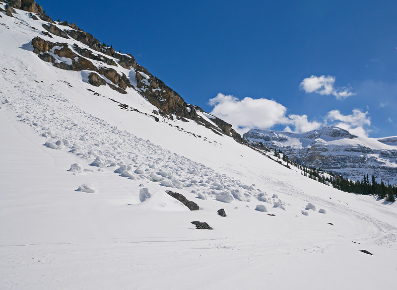 One of several recent wet snow slides on the traverse above the upper part of the canyon.