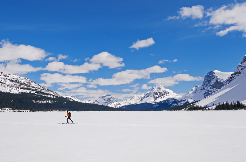 Great long distance views of the upper Bow Valley, and easy travel across the well frozen Bow Lake.