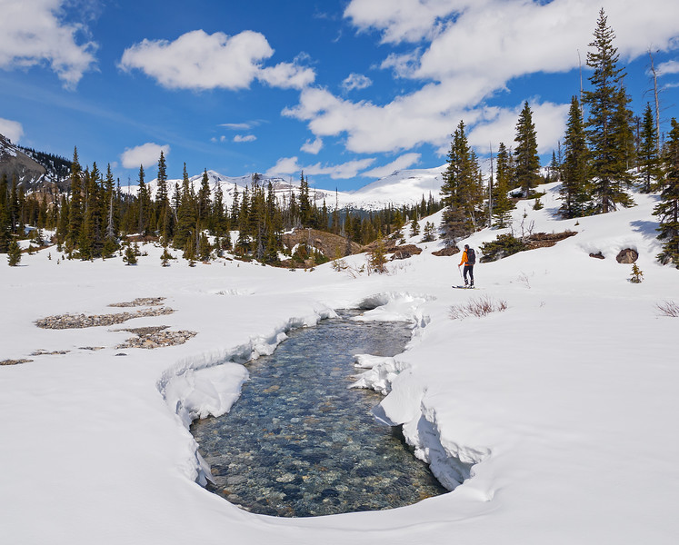 The infant Bow River reveals itself. Some of the snow bridges in this section won't likely last the week.