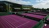 Robinsons turns Wimbledon Purple
