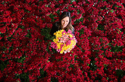 11/02/18 - ASDA HELPS LOVE BLOOM WITH RECORD NUMBER OF ROSES FOR VALENTINE'S DAY