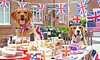 Dog Street Party