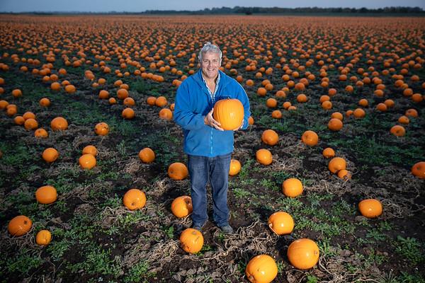 22/10/18 - ASDA Pumpkins