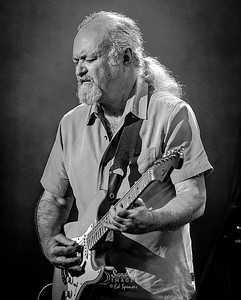 Tinsley Ellis, Kelsey Theater, 2018