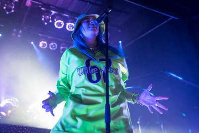 Billie Eilish Performs in Toronto