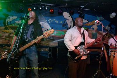 Splash Band 028