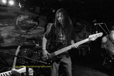 Splash Band 041