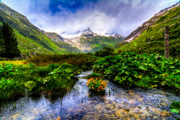 Swiss Valley with River and Flowers