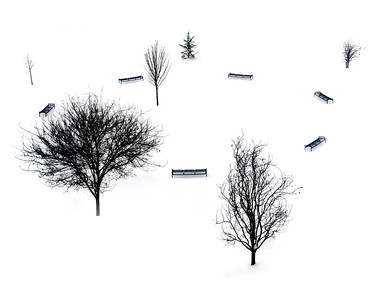 Scene at a Snowy Park