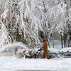 January 26, 2011 Thunder Snow