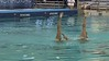 2017 Synchro America Open | Video Archive