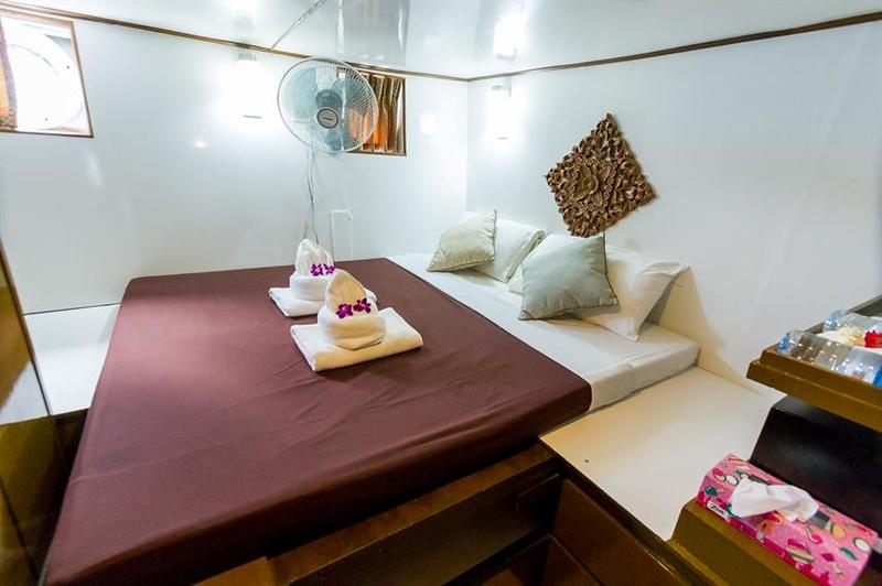 Lower Deck Standard Cabin