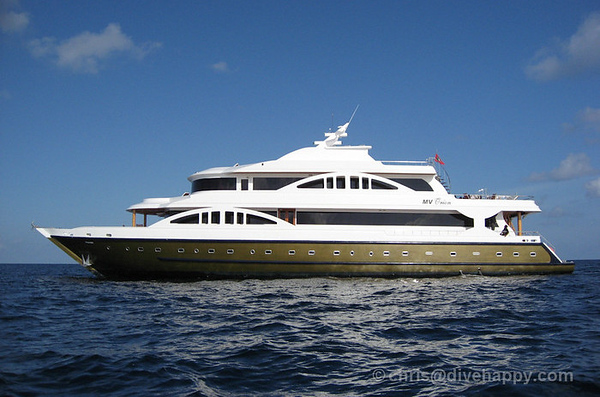 Maldives Liveaboard MV Orion Review