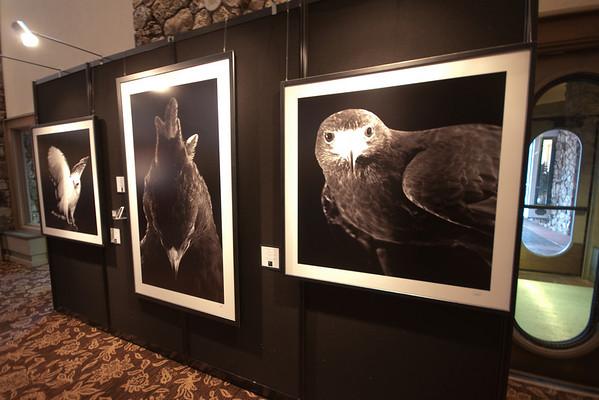Birds of Prey World Cup - Beaver Creek - 2010