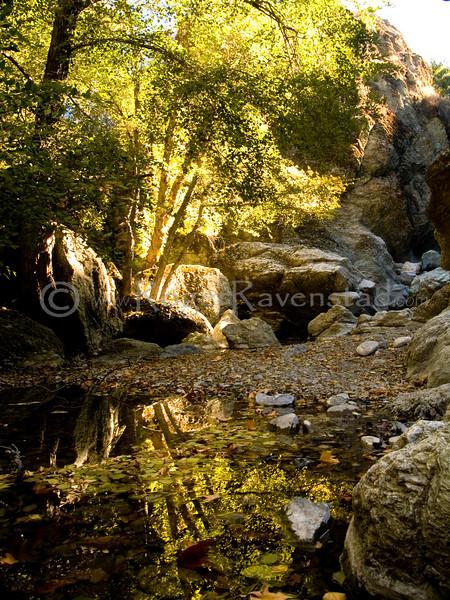 "<font face=""Papyrus"" color=""#5D92B1"" size=""5"">Little Yosemite</font> Sunol Regional Wilderness <font face=""Trebuchet MS"" size ""3""><i>Image I.D. #:  V-07-007</i>  This image is available for purchase in the <font face=""papyrus"" color=""#5D92B1"" size=""3""><a href=""http://www.rogerravenstad.com/Fine-Art/Art-Prints-for-Framing/1851170_wYH4t#224851974_5tVTR"">Fine Art Gallery</a></font>"