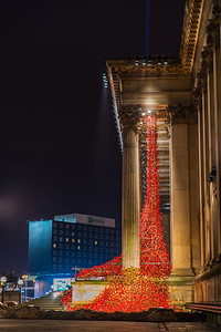 The Poppies: Wave and  Weeping Window sculpture, St George's Hall, Liverpool