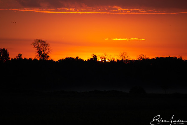 Lynde Shores Conservation Area - early morning sunrise