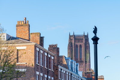 Rodney Street and Liverpool Cathedral