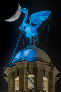 Crescent Moon and Liverpool Liver Bird