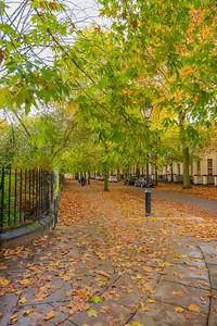 Liverpool in Autumn