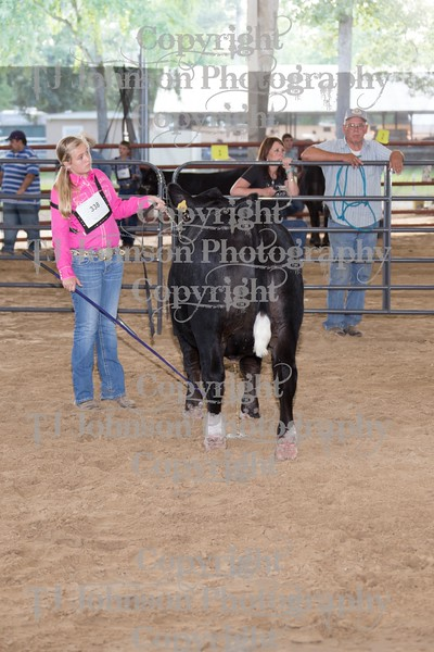 2015 CCYPS County Steer Show