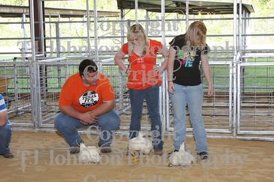 Channelview FFA Livestock Show