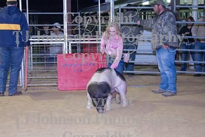2013 Channelview FFA Market Swine