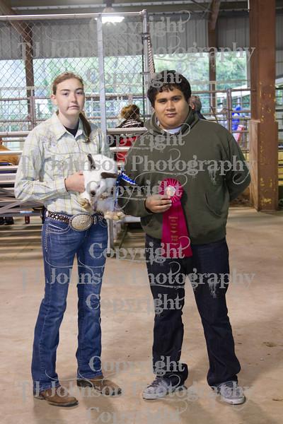 2013 Channelview FFA Breeding Rabbit Show