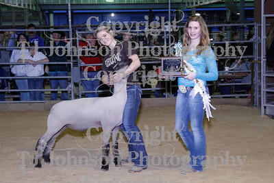 2013 Channelview FFA  Grand and Reserve Winners