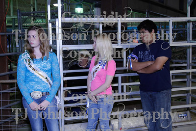 2013 Channelview FFA Open Lamb Show