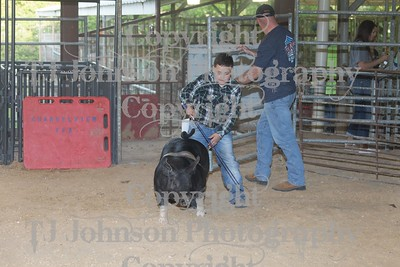 2017 Channelview FFA Market Swine
