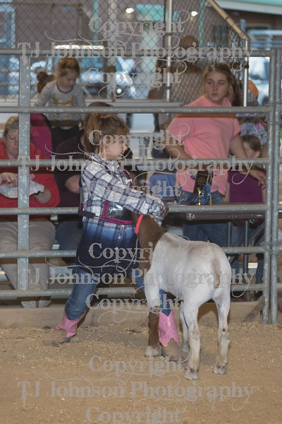 2017 Channelview FFA Open Goats