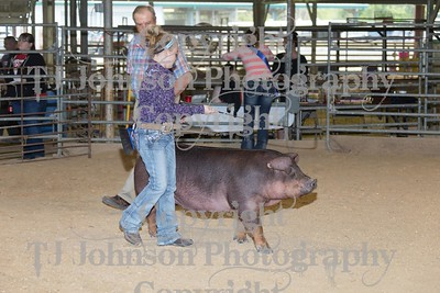 2017 Channelview FFA Open Swine