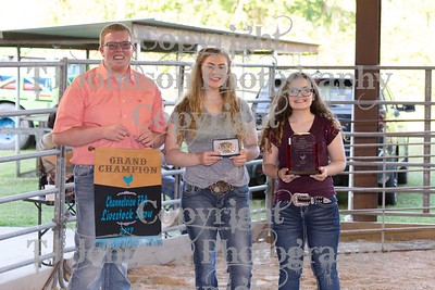 2017 Channelveiw FFA Grand - Reserve - Showmanship