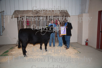 2012 Galena Park Livestock Show Auction