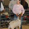 2009 HCF Goat Show CLass 3 : All photos are color corrected before shipping.  This process allows you to change the cropping of your photos.