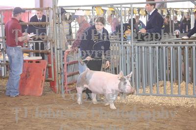 2009 Klein ISD Swine Show Class 2